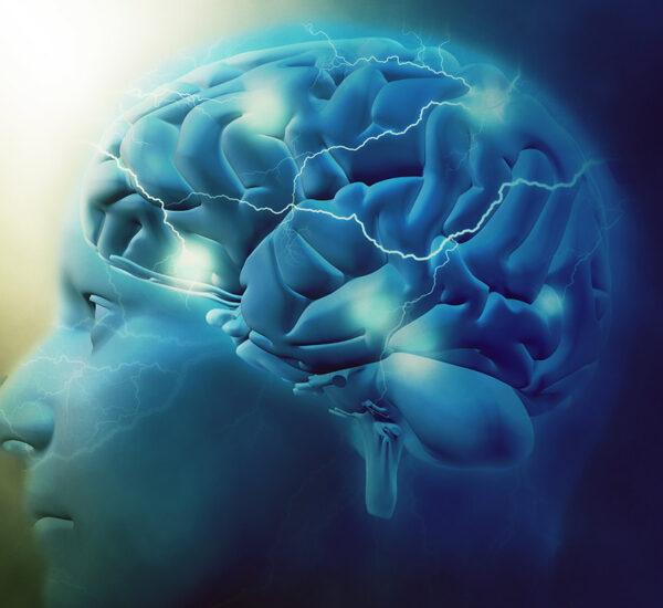 Conheça O Seu Mindset E Aumente Seu Poder Para